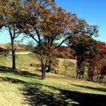 Abe's RV Park - Oklahoma City, OK - RV Parks