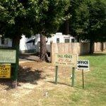 Tall Pines Rv Park - Jacksonville, AR - RV Parks