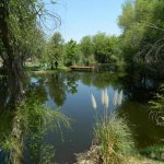 La Siesta Campground - Arivaca, AZ - RV Parks
