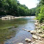 Potomac-Garrett State Forest - ,  - Maryland State Parks