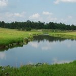 H. Cooper Black Jr. Memorial Field Trial and Recreation Area - Cheraw, SC - RV Parks