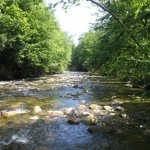 Yancey County Toe River Campground - Burnsville, NC - County / City Parks