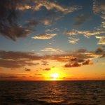 Calusa Campground Resort & Marina - Key Largo, FL - RV Parks