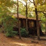Bastrop State Park - Bastrop, TX - Texas State Parks