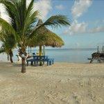 Kings Kampground - Key Largo, FL - RV Parks