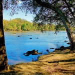 Landsford Canal State Park - Catawba, SC - South Carolina State Parks
