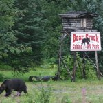 Bear Creek RV Park - Asheville, NC - RV Parks
