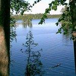 Scenic State Park - Bigfork, MN - Minnesota State Parks