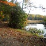 Caledon State Park - King George, VA - Virginia State Parks
