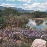 Fountain Creek RV Park - Colorado Springs, CO - RV Parks