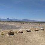 Amargosa Valley Rest Area - Amargosa Valley, NV - Free Camping