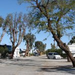 Cathedral Palms RV Resort - Cathedral City, CA - RV Parks