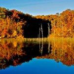 Village Creek State Park - Wynne, AR - Arkansas State Parks