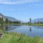Cutchie #2 - Loomis, WA - Free Camping