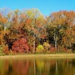 Four Seasons Family Campground - Pilesgrove, NJ - RV Parks