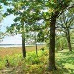Rice Lake State Park - Owatonna, MN - Minnesota State Parks