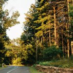 Good's Woods Campground - Carrollton, OH - RV Parks