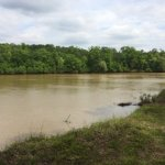 Omussee Creek Park - Columbia, AL   - County / City Parks
