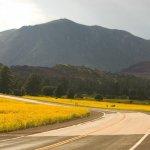 Black Barts RV Park - Flagstaff, AZ - RV Parks