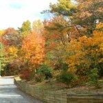 Fancy Gap / Blue Ridge Parkway KOA - Fancy Gap, VA - KOA
