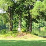 Bass Lake RV Campground - Dillon, SC - RV Parks
