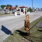 Tropic Winds RV Resort - Harlingen, TX - Encore Resorts