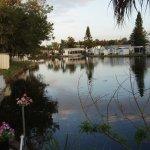 Ellenton Gardens RV Resort - Ellenton, FL - RV Parks