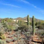 Tra-Tel Tucson RV Park - Tucson, AZ - RV Parks