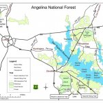 Angelina National Forest - Zavalla, TX - National Parks