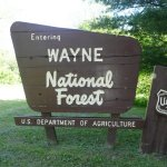 Iron Ridge Campground Wayne National Forest - Pedro, OH - National Parks