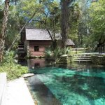 Ocala National Forest - Silver Springs, FL - National Parks