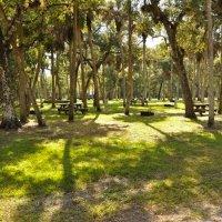 Collier Seminole State Park