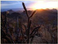 Big Bend National Park - Big Bend National Park, TX - Historic and Cultural Parks