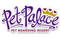 Pet Palace - Delaware, OH - Professional
