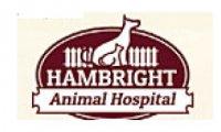 Hambright Animal Hospital - Huntersville, NC - Professional