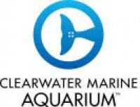 Clearwater Marine Aquarium - Clearwater, FL - Entertainment