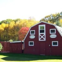 CREATURE COMFORTS ANIMAL INN, LLC - North Stonington - North Stonington, CT - Services