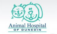 Animal Hospital  Of Dunedin - Dunedin, FL - Professional