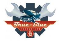 True Blue Automotive LLC - Phoenix, AZ - Automotive