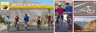 BIKE BORREGO BICYCLE RENTALS - Borrego Springs - Borrego Springs, CA - Entertainment