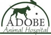 Adobe Animal Hospital - Petaluma, CA - Professional