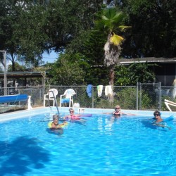 Great Oak Rv Resort - Kissimmee, FL - RV Parks