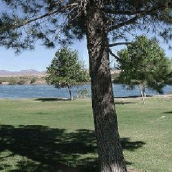 Blythe / Colorado River KOA - Blythe, CA - KOA