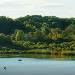 Camp Bullfrog Lake - Willow Springs, IL - County / City Parks