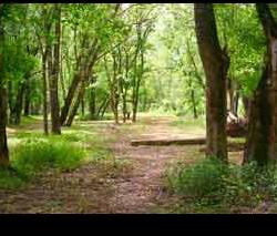 Red River Gorge Camp Ground - Stanton, KY - RV Parks