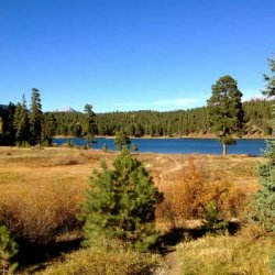 Lightner Creek Campground - Durango, CO - RV Parks