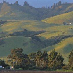 Monterey Vacation RV Park - San Juan Bautista, CA - RV Parks