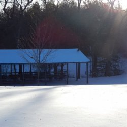 Lake in the Pines Campground - Sunman, IN - RV Parks