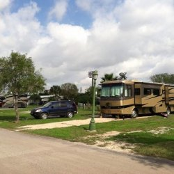Palmdale Rv Resort - San Benito, TX - RV Parks