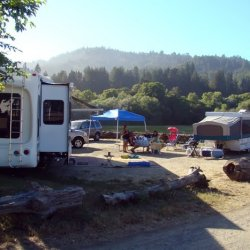 Casini Ranch Family Campground - Duncans Mills, CA - RV Parks